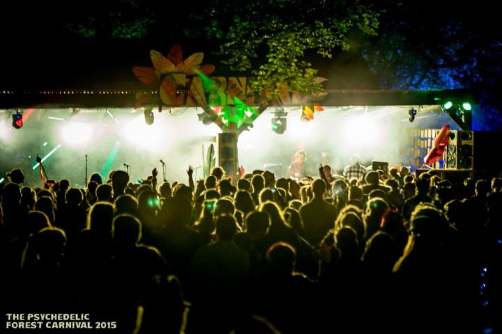 Psychedelic Forest Carnival 2015