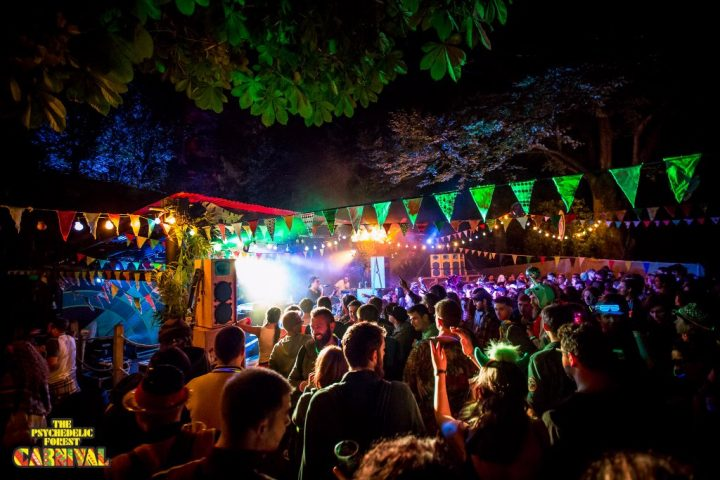 Psychedelic Forest Carnival 2016