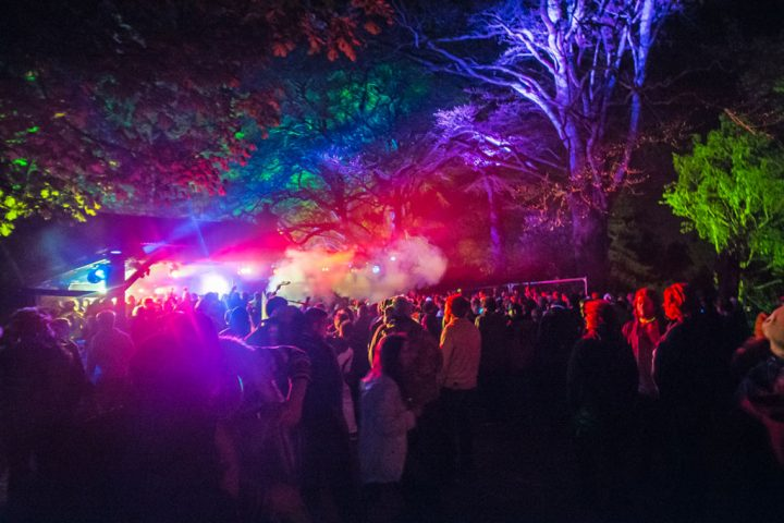 Psychedelic Forest Disco 2016